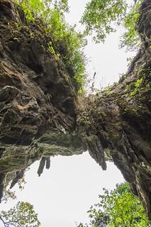 doi pha tang - thailande 37