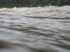 UW110100.jpg (jramspott) Tags: georgia storm river nature water chattahoochee atlanta rain tropicalstorm irma unitedstates us