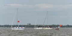 2017-07-31_Keith_Levit-Sailing_Day2072 (2017 Canada Games // Jeux du Canada 2017) Tags: canadasummergames gimli gimliyachtclub interlake keithlevitphotography laser manitobs sailing winnipeg cgsailing 2017canadasummergames