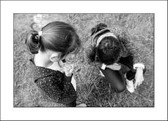 Dis maman.... (Panafloma) Tags: 2017 bandw bw bretagne famille géographie nadine nadinebauduin natureetpaysages personnes ploumanach techniquephoto végétaux blackandwhite côtedegranitrose noiretblanc noiretblancfrance province france fr