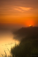 IMG_9251 (figoosia) Tags: podlasie natura narew sunrise sky landscape poland