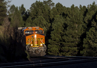 BNSF 3982 W Z WSPSBD7 16L Flagstaff, AZ