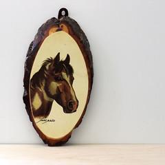 Pony. (Kultur*) Tags: vintage vintagedecor homedécor walldécor wallhanging print decor animal wood illustration woodplaque horse pony equestrian sharon blaine sharonblaine horseart