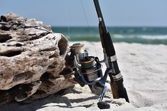 Tools of the Trade (Hollingsworth18) Tags: gulf shores alabama shimano fishing reel beach fish ocean mexico driftwood braid monofilament sand water summer fall september