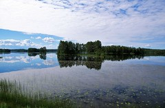 reflections and a wonderful moment (atsjebosma) Tags: meer reflections reflecties trees bomen clouds wolken summer zomer july juli atsjebosma sweden zweden ngc lapland