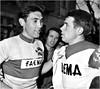 1968 Mi Amigo Guido (Sallanches 1964) Tags: eddymerckx faema roadcycling stagecourse g