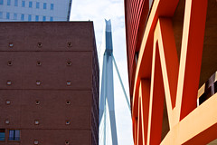 Peek-a-boo (Rosetta Bonatti (RosLol)) Tags: netherlands olanda rosettabonatti roslol rotterdam architecture architettura erasmusbridge abstract details erasmusbrug dezwaan luxortheater luxor
