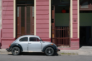 The Silver Beetle