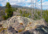 Igneous outcropping near McBride Lake. Yellowstone Park (spotwolf5) Tags: yellowstonepark
