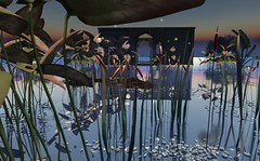 Listen to the silence/ -Garden- by anc cattail allcolor (Bisou @ The Outer Garden) Tags: 3d installation jewelry sl virtualworld sl landscape secondlife secondlife 3d 2017 avatar anc