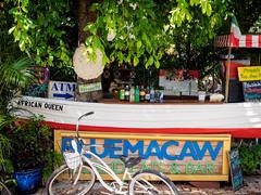 Key West Street Scenes:  Blue Macaw (Ed Rosack) Tags: street usa keywest sign thekeys ©edrosack florida