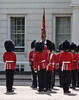 Img596080nx2 (veryamateurish) Tags: london westminster wellingtonbarracks army military changingoftheguard oldguard householddivision grenadierguards