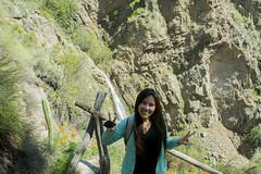 (Persistencia de la Memoria) Tags: cerro paisaje naturaleza nature santiago cajon maipo amor love campo tranquilidad chile montaña verde arbusto arbol treking riomaipo rio