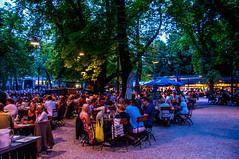 Augustinerkeller (Tony Shertila) Tags: 20170824201040 outdoor münchen bayern germany europe augustinerkeller deutschland alamannia bavarian city onemillionvillage beergarden augustiner park restaurant beer food deu