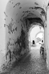 bicycle | lagos (John FotoHouse) Tags: lagos 2017 portugal bw blackandwhite bicycle seawall vanishingpoint dolan flickr fujifilmx100s fuji johnfotohouse j september copyrightjdolan