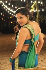 Indian Actress Ramya Hot Sexy Images Set-1 (26)