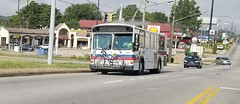 CARTA # 124 (busnut1971) Tags: citybus carta gilligphantom 124