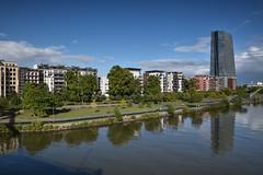 2017 EZB mit Häusern an der Weseler Werft (mercatormovens) Tags: frankfurt frankfurtammain city grosstadt stadtlandschaften ecb ezb ostend mainufer main