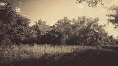 some wounds never heal... (BillsExplorations) Tags: abandoned decay ruraldecay forgotten old shuttered abandonedillinois abandonedfarm sepia oncewashome farm rural country trees wounds cold isolation