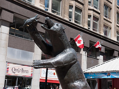 Sparks Street (Travis Estell) Tags: canada canadianflag downtown downtownottawa nationalcapitalregion ontario ottawa régiondelacapitalenationale sparksstreet art bearstatue flag nationalflag publicart ruesparks statue ca