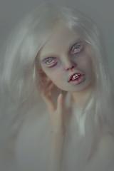 pure madness (dolls of milena) Tags: bjd abjd resin doll popovy sisters art magpie portrait