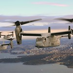 Ospreys Over Sydney, Australia thumbnail