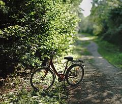 farewell summer light 2017 (Amselchen) Tags: bike bicycle bokehpanorama bokehpano bokeh blur dof depthoffield lighandshadow light shadow season latesummer sony alpha7 porst 135mmf18