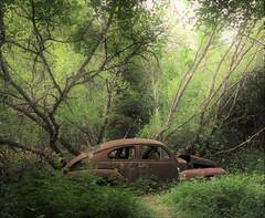 (Jonas.W.) Tags: abandoned rusted car vehicle volvo volvopv bilskrot forgotten samsung