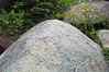 Thunderhead Sandstone (Neoproterozoic; Clingmans Dome, Great Smoky Mountains, North Carolina, USA) 18 (James St. John) Tags: thunderhead sandstone precambrian proterozoic neoproterozoic clingmans dome great smoky mountains national park north carolina