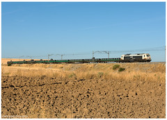 Pozaldez 18-08-16 (P.Soares) Tags: comboio comboios train trains tren transportesxxi terminalintermodal portugalferroviário lusocarris renfemercancias carga