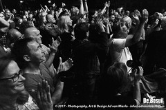 2017 Bosuil-Het publiek bij Back To Back en The Lachy Doley Group 8-ZW