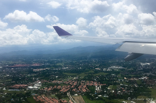Wings over Chiang Mai 8006