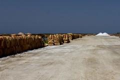 IMG_8333 (SalvoGulisanoFotografo) Tags: selinunte sicily greektemple