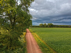 (Daniel000000) Tags: dji djispark spark drone uav road country rural landscape tree trees summer green sky clouds cloud cloudy storm stormy stormcloud field farm nature new light horizon