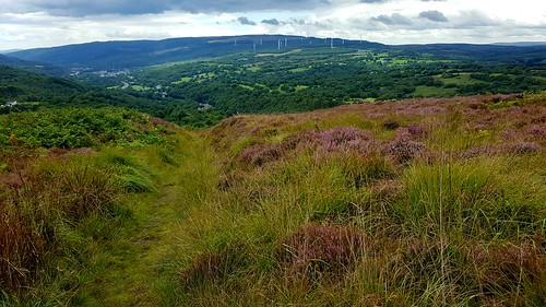 20170809_135013 View towards Penderyn