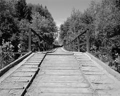Old bridge (fotoswietokrzyskie) Tags: tree mamiya7ii kodak medium format 6x7 analog trail poland bieszczady tmax 400 monochrome old bridge