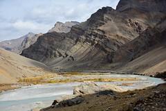Tsarap River Valley, India 2016 (reurinkjan) Tags: india 2016 ©janreurink himachalpradesh spiti kinaur ladakh jammuandkashmir kargil tsarapriver tsarapvalley nakeela5050m himalayamountains himalayamtrange himalayas landscapepicture landscape landscapescenery mountainlandscape