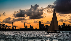 The adventurers of twilight. (Aglez the city guy ☺) Tags: twilight lateafternoon miamibeach florida unitedstates sunset sailboat waterways walkingaround colors starisland clouds cranes urbanexploration navigating sobe