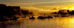 Lever de soleil à Ciboure (Pays Basque) (jjcordier) Tags: leverdesoleil aquitaine paysbasque ciboure nivelle jaune bateau rivière