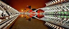 Ciudad de las Artes y Ciencias, Valencia (gerard eder) Tags: world travel reise viajes europa europe españa spain spanien städte city ciudades cityscape cityview calatrava ciudaddelasartesyciencias cityofartsandsciences stadtlandschaft stadtderkünsteundwissenschaften valencia santiagocalatrava panorama outdoor architecture architektur arquitectura night noche nacht museum modernarchitecture