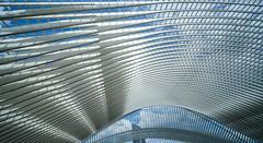 sky & roof (Blende1.8) Tags: station bahnhof liègeguillemins liege lütttich roof dach sky himmel blue blau abstract abstrakt urban lines linien shadows schatten belgium belgien architecture architektur santiagocalatrava carstenheyer sony alpha ilce7m2 vougtländer voigtlaender 12mm wideangle ultrawideheliar