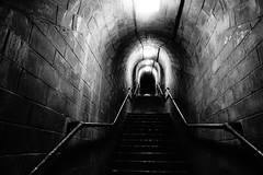 Ascent (JamieHaugh) Tags: shaldon devon england uk sony a6000 blackandwhite blackwhite monochrome bw indoors tunnel dark ascent stairs steps hole britain