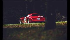 Ferrari 250 GTO (1964) (Laurent DUCHENE) Tags: chantillyartselegance 2017 ferrari 250 gto