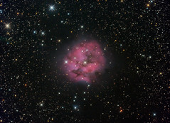 Cocoon Nebula (IC5146) HαRGB (Carballada) Tags: astrophotography astronomy deep space astro celestron zwo as1600mmc skywatcher ts sky qhy qhy5iii174 narrowband astrometrydotnet:id=nova2220592 astrometrydotnet:status=solved