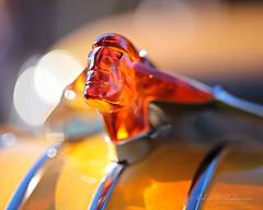 Amber Pontiac Hood Ornament & Bokeh (eoscatchlight) Tags: goodguyscarshow scottsdale arizona chrome classiccar bokeh