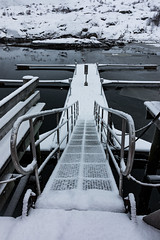 IMG_2517 (alessandro orfanù) Tags: norway lofoten vesteralen hurtigruten winter snow northernlight