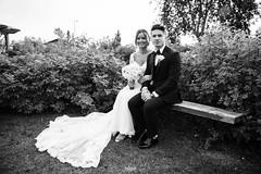 2K1A0604 (Traejae Photography) Tags: wedding marrage groom bride alaska acnhorage ceremony reception subaru sti lightroom canon 5d 5div sony a7 a7sii