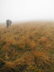 Stara Planina 118 (jecadim) Tags: staraplanina hiking trekking serbia srbija mountain fog foggy nature clouds autumn grassland pasture