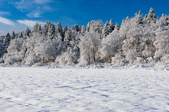Cerknica Lake (happy.apple) Tags: otok cerknica slovenia si winter snow zima sneg slovenija cerkniškojezero cerknicalake geotagged