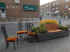 Crushed Velvet (navejo) Tags: montreal quebec canada chairs orange velvet bench flowers parkex